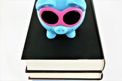 An concept image of a piggy with books stock photo