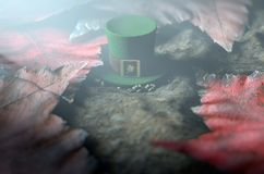 Lost Tiny Leprechaun Hat. A concept image showing a tiny leprechaun hat apparently lost on the ground surrounded by dead leaves at night - 3D render Stock Images