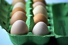 An concept Image of some Eggs in a box. Abstract Royalty Free Stock Photos