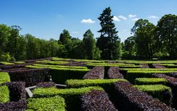Lost in a Maze Royalty Free Stock Images
