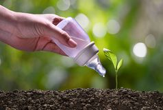 Concept  image of young plant being cared for and watered by baby water bottle on nature background