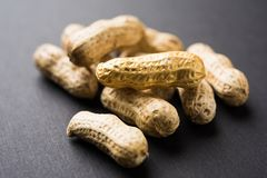 Concept of individuality, luck,value,exclusivity and better choice. Golden peanut or ground nut, standing out amongst normal peanu. Ts, over black or white Stock Photos
