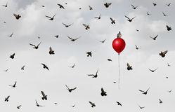 Concept Of Innovation. As a group of birds flying in confusion with an individual bird rising up on a red balloon as a success and leadership metaphor with 3D royalty free illustration