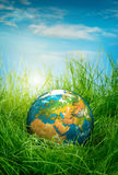 Concept - jour de terre Images libres de droits