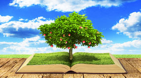 Concept of knowledge. Tree with fruit of knowledge growing out of book. Concept of reading. 3d illustration royalty free stock photo