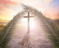 Concept of the Lamb of God: The Lamb in front of the Cross of God. A cross in the sky with light rays on a bright sunny day Stock Images