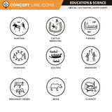 Concept Line Icons Set 16 Cave art Royalty Free Stock Image