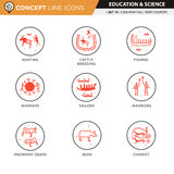 Concept Line Icons Set 16 Cave art. Anthropology and cave painting theme black line icons in white isolated background used for school and university education Stock Photography