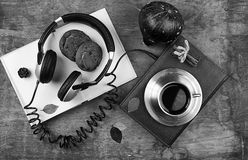 Concept of listening to audio books in the learning process Royalty Free Stock Photos