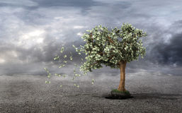 Concept of loss your money. Hand picks the money tree is taken f. Rom the earth on a grey clouds background. Loss profit. Losing your savings and managing your Royalty Free Stock Images