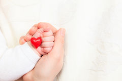 Concept of love and family Royalty Free Stock Images