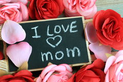 Concept of love for mother Stock Image