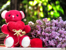 Concept for love on valentines day, teddy bear sit hold the red heart by side with  red velvet box with ring and bouquet of flower Royalty Free Stock Images