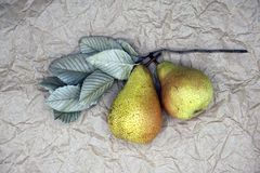 Two yellow pears with silver green leaves on crumpled paper background. Top view, Copy space. royalty free stock photos