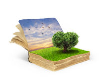 Concept of magic book covered with grass Royalty Free Stock Image