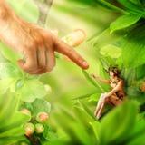 Concept Mensen en magische feeën Stock Fotografie