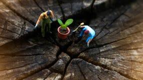 Concept miniature de serre chaude, deux de mini chiffres miniatures avec photographie stock libre de droits