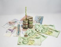 Green tree sprouting from roll US banknotes and use a rubber band with roll Japanese banknotes on the pile of Thai and Cambodian. The concept of money growth Stock Photography
