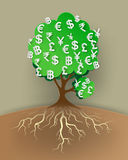 Concept of money tree . Vector illustration Royalty Free Stock Photography