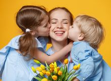 Concept of mother`s day. mom and children with flower on colored Stock Photography