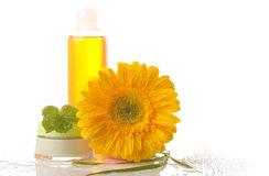 Concept of natural cosmetic Royalty Free Stock Images