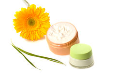 Concept of natural cosmetic Royalty Free Stock Photo
