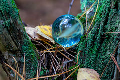 The Concept of nature, autumn forest. Crystal blue ball on a wooden old stump with leaves and moss. Royalty Free Stock Photography