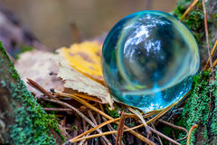 The Concept of nature, autumn forest. Crystal blue ball on a wooden old stump with leaves and moss. Stock Photo