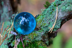 The Concept of nature, autumn forest. Crystal blue ball on a wooden old stump with leaves and moss. Stock Photos