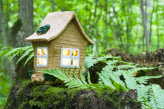 The concept of nature, green forest. Clay House on a wooden stump with leaves. Royalty Free Stock Images