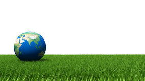 Concept of nature. Planet earth on grass Stock Image