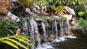 The concept, the nature was created by human hand. The small waterfall, surrounded by small trees and bushes, was built into small stock footage