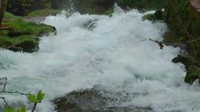 Concept naturel de belle crique de cascade banque de vidéos
