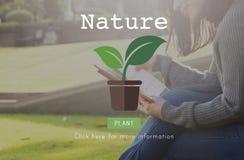 Concept naturel de conservation environnementale d'écologie de nature photos stock