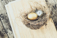 Concept of nurturing time as a valuable asset. Golden egg and pocket watch stock photos
