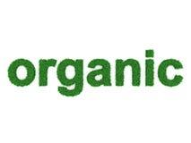Concept organique Photographie stock libre de droits