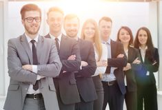 Portrait of a professional team of specialists. Concept of partnership. group of professional specialists Royalty Free Stock Photography
