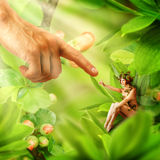 Concept of People and magical fairies Stock Photography