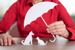 Concept of pets protection coverage. General agent protecting pets, concept of pets protection coverage Stock Photos