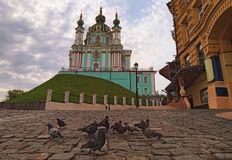 Concept photo of animals in big city. A group of pigeons are looking for food on the road. Scenic landscape view of Andriyivskyy Descent and Saint Andrew`s stock photography