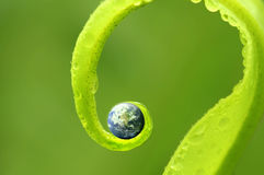 Concept photo of earth on green nature ,Earth map by courtesy of Stock Image