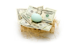 The Nest Egg Stock Image