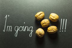 Illustrated phrase I am going nuts. Concept of the phrase I`m going nuts with brown nuts and white hand writing on black paper background Stock Images