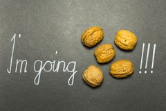 Illustrated phrase I am going nuts. Concept of the phrase I`m going nuts with brown nuts and white hand writing on black paper background Royalty Free Stock Images