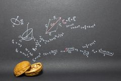 Phrase Physics in a nutshell Stock Images