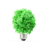 Concept of plant replacing the light bulb. Royalty Free Stock Photos