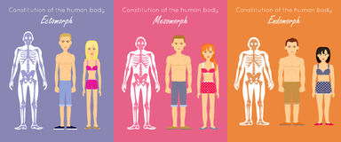 Concept plat de vecteur de conception de constitution de corps humain illustration libre de droits