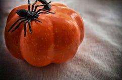 Concept pour la célébration de Halloween Photos stock