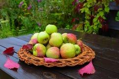 Concept pour les fruits saisonniers, la récolte d'automne, l'agriculture biologique et l'agriculture Photographie stock libre de droits