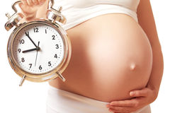 Concept of pregnancy. belly tummy of pregnant woman and alarm cl Royalty Free Stock Photo